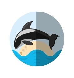 Killer whale marine wildlife species badge shadow vector
