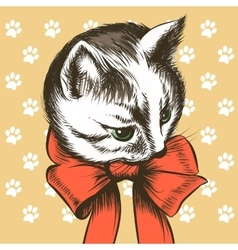 Kitten with Red Bow vector image