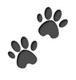 3d animals footprint footprint dog or cat in vector image vector image