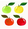 apple fruits vector image vector image
