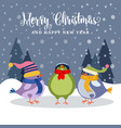besutiful christmas card with birds vector image vector image