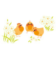 Chickens and flowers vector image vector image