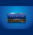 premium blue green label with golden frame vector image vector image