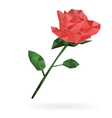 rose low poly design vector image