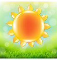 Summer Time Poster With Grass vector image vector image