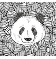 cute head of chinese bear panda vector image vector image
