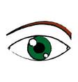eye look optical vision eyebrow symbol vector image vector image