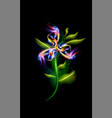 glowing modern flower blue colorful ornamental vector image vector image