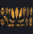 golden luxury tribal feathers set gold boho vector image