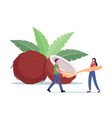 people use coconut oil concept tiny male vector image vector image