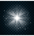 Shine star sparkle icon 17 vector image vector image