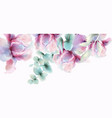 transparent flowers watercolor provence vector image vector image