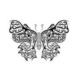 beautiful black and white butterfly isolated on vector image vector image