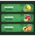 FruitsBanner vector image