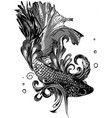 gold betta siamese fighting fish betta splendens vector image