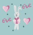 gray rabbit with gift vector image