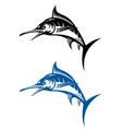 marlin fish vector image vector image