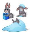 set cute grey bunnies isolated on white vector image vector image