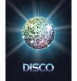 Mirror disco ball poster vector image