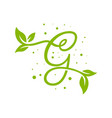 leaf logo design letter g vector image vector image