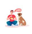 man giving favourite food to saint bernard dog vector image