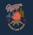summer camp adventure vintage graphic bonfire vector image vector image