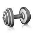 Realistic dumbbell vector image