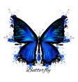 detailed blue butterfly with spots vector image