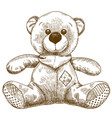 engraving of teddy bear toy vector image