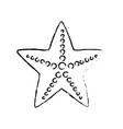 figure beauty starfish animal that live in the sea vector image