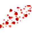flying red petals vector image