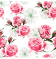 pink roses and white herbs seamless pattern vector image vector image