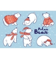 Polar Bears collection in red sweater scarf and vector image vector image