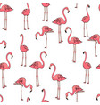 seamless background three pink flamingos on white vector image