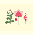 simple colorful flowers in a flat style vector image