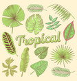 tropical leaves hand drawn doodle with palms vector image vector image