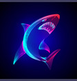 angry dangerous shark outline underwater vector image