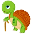 cartoon elderly tortoise vector image vector image