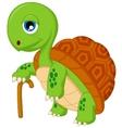 Cartoon elderly tortoise vector image