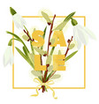 floral snowdrops and pussy willow hand drawn vector image vector image