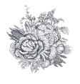 hand drawn farm vector image vector image