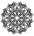 intricate floral mandala isolated on white vector image vector image