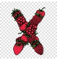 Letter X made from red berries sketch for your vector image vector image