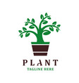 plant logo design template vector image vector image