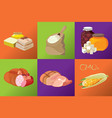 sausages smoked meats simple carbohydrates vector image vector image