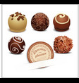 set of chocolates vector image vector image