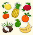set of tropical and citrus fruit stickers vector image vector image