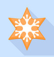 snowflake star cookie icon flat style vector image