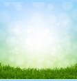 spring grass border vector image vector image