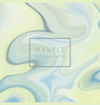 abstract marble texture vector image vector image
